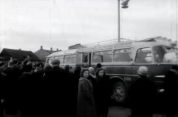 Ikarus bussid