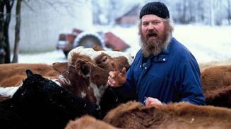 Lehmakauplemine