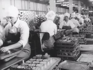 Eesti NSV toiduainetetööstus