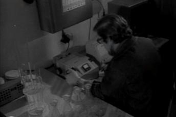 Forellikasvatuse uus meetod Kirovi kalurikolhoosis