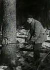Kindlustame metsatööde plaani täitmise