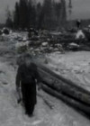 Talvistel metsatöödel