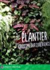 Plantier Multimeedia elamus