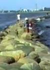 On the Pier in Pärnu on June 27, 1990