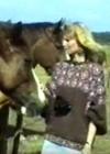 Tori hobusekasvanduses 27.06.1990
